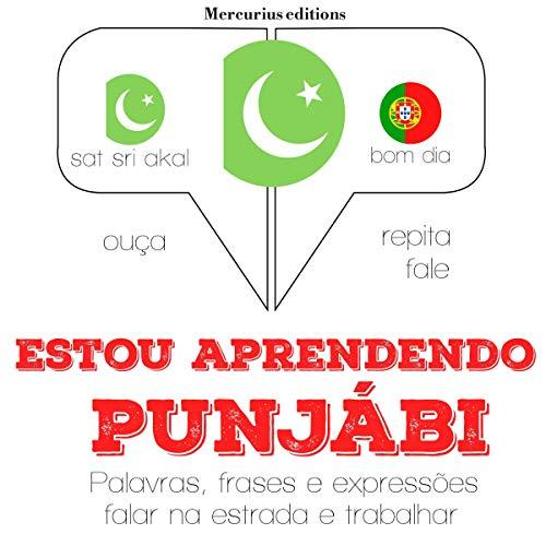 Estou aprendendo punjabi audiobook cover art