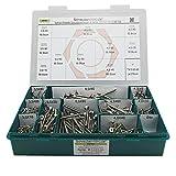 Sortiment Edelstahl Schrauben A2 Durchmesser 3,0 bis 6,0 mm, 556 Teile ; Holzschrauben/Spanplattenschrauben mit verstärktem Kopf; Material: VA V2A