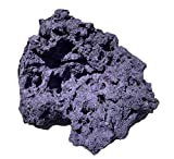 Reef Revive - Reef Rocks – Dry Fiji Purple Live Rock for Salt/Freshwater Aquariums - Aquascaping - (10lb)