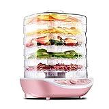 ZNBJJWCP Máquina de Carne de Hierbas y Verduras de Frutas secas, Mini deshidratadores de Alimentos para el hogar, Carne para Mascotas, deshidratada, 5 bandejas, secador de Aire para Aperitivos