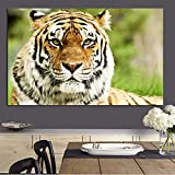 Modern Jungle Wild Tiger Landscape Oil Painting Print on Canvas Pop Art Animal Wall Picture Living Room Modern Decor 60x90CM
