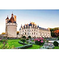 Chenonceau Castle - パズル - 大人と子供のための教育的なおもちゃ、品質の親子のおもちゃ、500/1000/100/2000/3000/4000/5000/6000 0219 (Color : A, Size : 500 pieces)