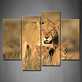 4 Panel Lioness With Cubs In Early Morning Light Kalahari Desert South Africa Grass Oil Paintings On Canvas Print Animal T...