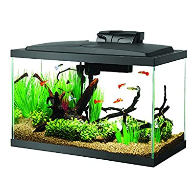Aqueon 100527256 Fish Tank Aquarium LED Kit, 10 Gallon