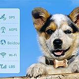 Rastreador de mascota Seguimiento de mascotas prevención de pérdidas de Smart Localizador virtual Correa mascota Ruta Rastreador de 3 colores Buscador de mascota ( Color : Yellow , Size : 75X40X23mm )