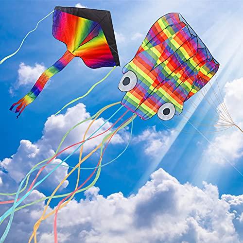 Drachen für Kinder,2Stk Einleiner Flugdrachen,6M Regenbogen Oktopus Drachen,Großer Bunter Krakendrachen mit Langem Schwanz,Flugfähigkeit Lenkdrachen,Flugspielzeug Set für Erwachsene, Kind ab 5 Jahren