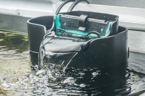 Tetra EasyCrystal Filter Box 300 Aquarium-Innenfilter (mit Heizerfach für kristallklares gesundes Wasser, einfache Pflege, keine nassen Hände beim Filterwechsel, intensive mechanische biologische chemische Filterung), geeignet für Aquarien von 40 bis 60 Liter - 10