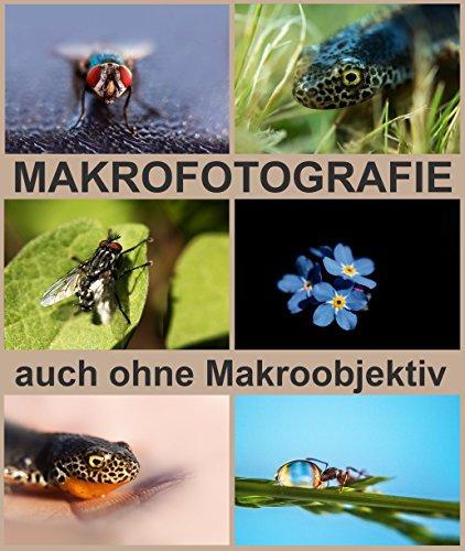MAKROFOTOGRAFIE auch ohne Makroobjektiv zu tollen Makrofotos.
