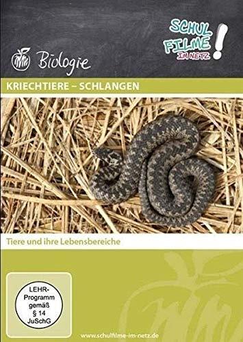 Kriechtiere - Schlangen, 1 DVD