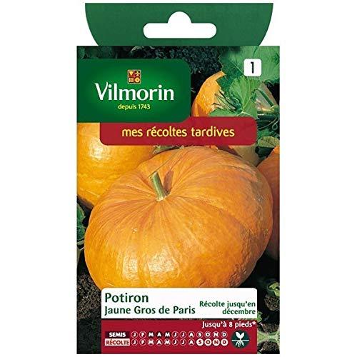 Vilmorin - Sachet graines Potiron jaune gros de paris