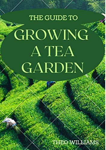 THE GUIDE TO GROWING A TEA GARDENING: The Complete Guide to Growing and Harvesting Flavorful Teas (English Edition)