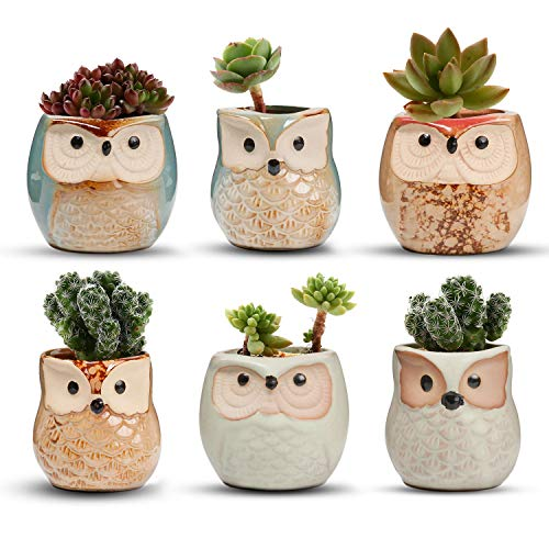 T4U 2.5 Inch Owl Ceramic Succulent Planter Pots with Drainage Hole Set of 6, Flowing Glaze Porcelain Handicraft Plant Holder Container Gift for Mom Sister Aunt Best for Home Office Garden Decoration