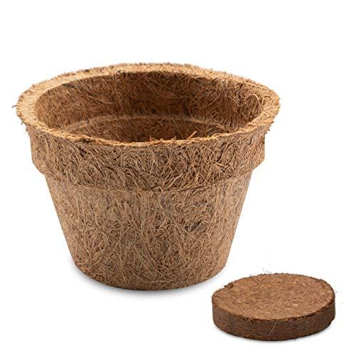 10x Kokos Anzuchttöpfe & Quelltabletten torffrei für eine erfolgreiche Anzucht - ideal für Stecklinge & Samen - verschiedenen Größen (0,15 L - Ø 8 cm)