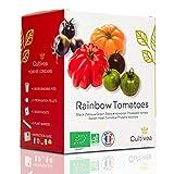 Cultivea – Mini Kit Huerto de Tomates Arcoíris – 100% Semillas Bio - Jardina, Decora y Degusta - Idea de Regalo (Cebra Negra y Verde, Tomate Hawaiana, Tomate de Corazón Dulce, Physalis Ixocarpa)