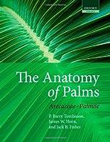 The Anatomy of Palms: Arecaceae - Palmae