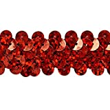 Expo International Inc. 2 Row Starlight Hologram Stretch Sequin Trim, 20 yd, 7/8', Red