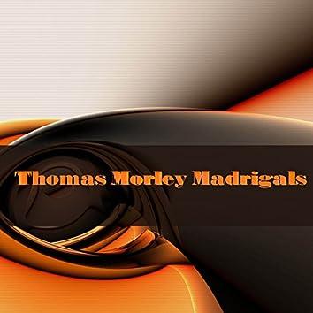 Thomas Morley: Madrigals