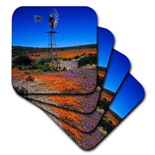 3dRose CST_208389_1 Windmühle & Blumen, Namaqualand, Nordcape, Südafrika, weiche Untersetzer, 4 Stück