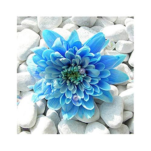 Kit de pintura de diamantes cuadrados 5D por número, punto de cruz kit bordado de flores azules de diamante ,kit square diamond painting 5d,manualidades cuadros 5d para decoración de pared 30 x 30 cm