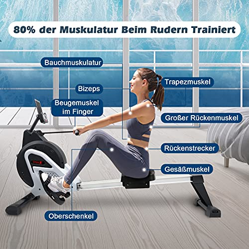 Dripex 2021 Rower Rudergerät Effektives Training