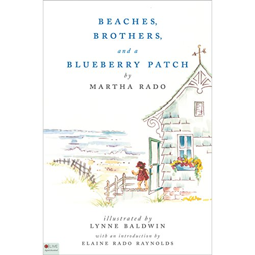 Beaches, Brothers, and a Blueberry Patch audiobook cover art