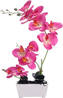 Orchid Plant  For Artificial Flowers,Orchids Artificial,Orchid Arrangement ,Orchid Plant  Perfect Packaging 11 Heads 4 Color With Woodiness Vase For Environmental Protection