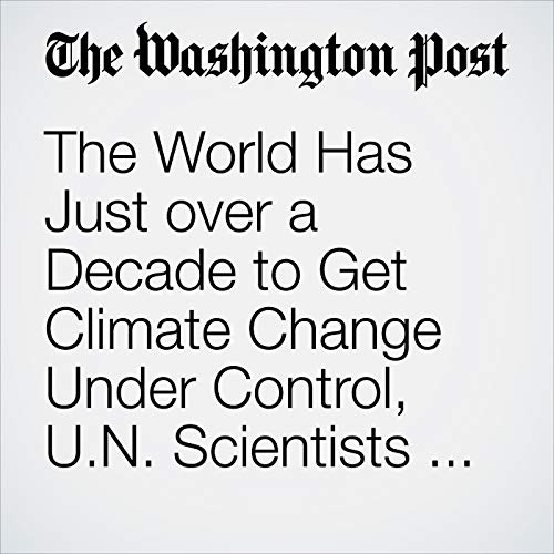 The World Has Just over a Decade to Get Climate Change Under Control, U.N. Scientists Say copertina
