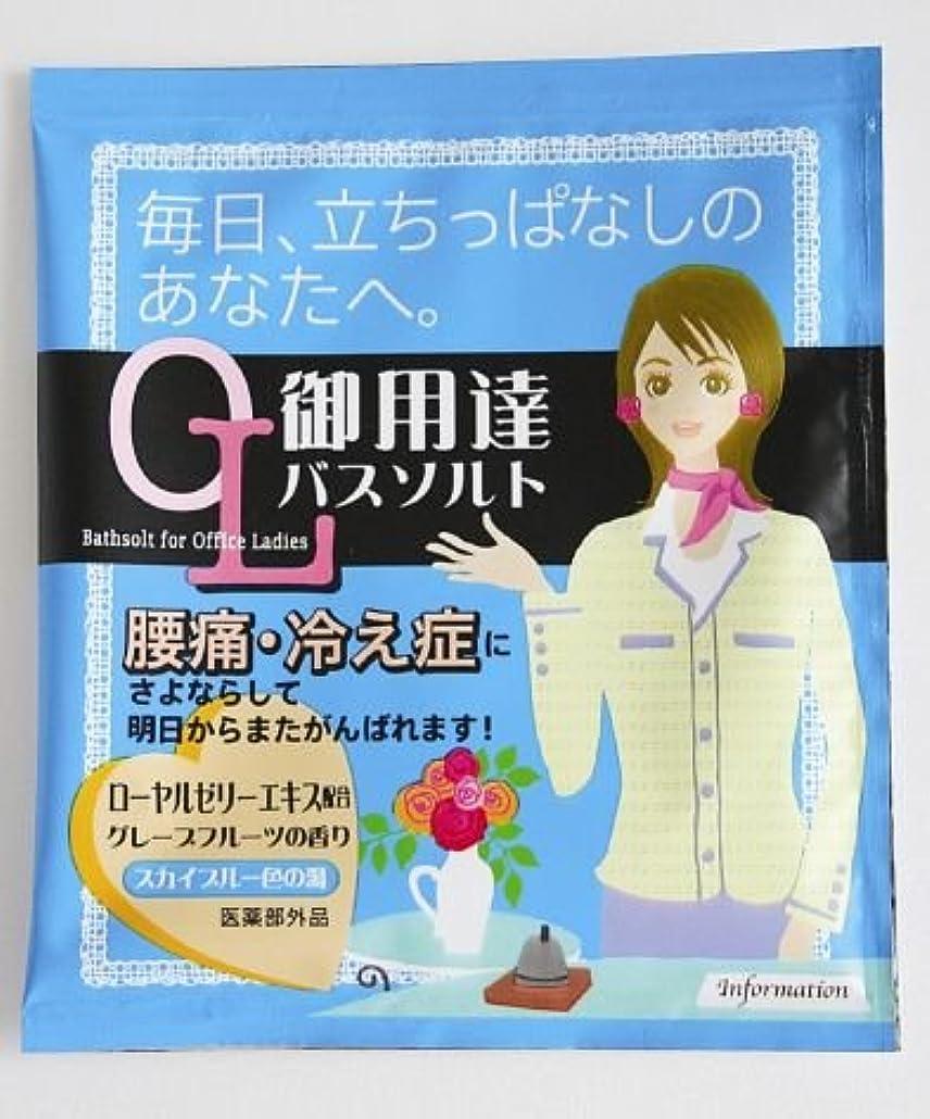 ブラシ第二蜂入浴剤 OL御用達バスソルト~毎日、立ちっぱなしのあなたへ~(腰痛?冷え性)