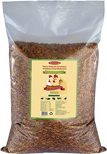 10lbs Bulk Non-GMO Dried Mealworms for Reptile, Tortoise ;...