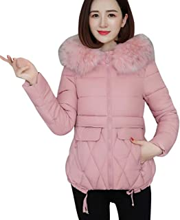 Parka Coat Women's Plush Jacket Thick Jacket Warm Winter Jacket Short Hooded Coat Puffer Coat Pockets Fur Collar