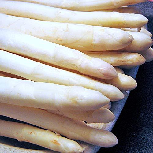 北海道産 ホワイトアスパラガス(秀品・L〜2Lサイズ)1kg 出荷時期:5〜6月【出荷元:北海道四季工房】
