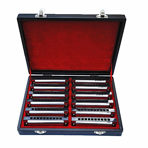 Swan 10 Hole Blues Power Harmonica Blues Harp Harmonica Diatonic Harmonica Set...