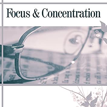 Focus & Concentration – Best Classical Music for Study, Brain Power, Stress Free, Exam Music, Mozart
