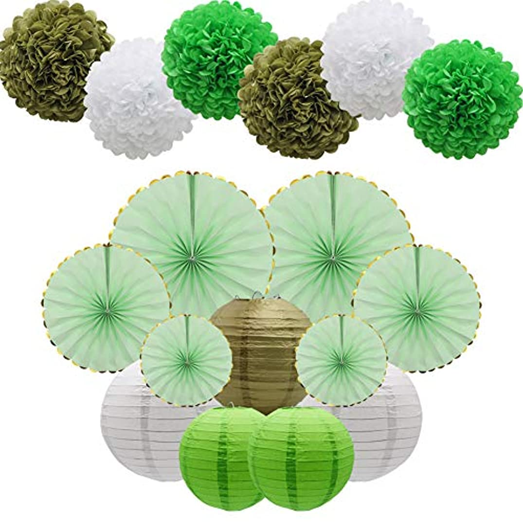 Green Party Decorations Supplies Kit, Paper Lanterns, Tissue Pom Poms Flowers, Paper Hanging Fans Set for Baby Showers Bridal Birthday Wedding School