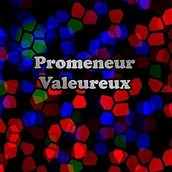 Promeneur Valeureux