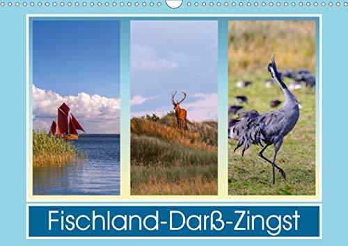 Fischland-Darß-Zingst (Wandkalender 2021 DIN A3 quer)