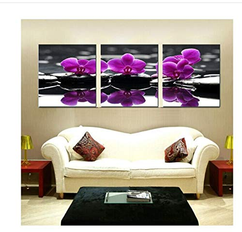 zhaoyangeng Moderne Wandfarbe Lila Orchidee Dekoration Blumen Kunst Foto Malerei Auf Leinwand- 50X50Cmx3 Stück Kein Rahmen