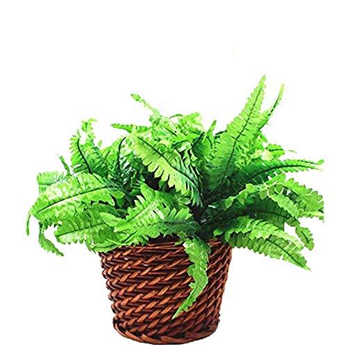 3 x helecho artificial de hierba persa, primavera verde simulación hierba de helecho de hoja, planta de plástico para la boda en el hogar decoración de jardín al aire libre