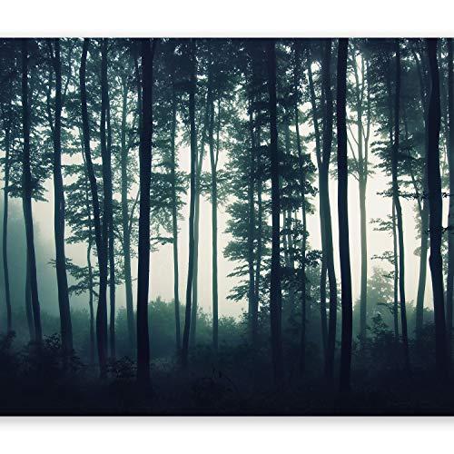 murando Fototapete Wald 400x280 cm Vlies Tapeten Wandtapete XXL Moderne Wanddeko Design Wand Dekoration Wohnzimmer Schlafzimmer Büro Flur Wald Natur Nebel c-B-0223-a-a