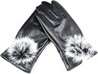 SGJFZD Women's Winter Gloves Outdoor Touch Screen Texting Riding Gloves Windbreak Thermal Gloves (Color : Black, Size : OneSize)