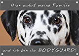 Petsigns Hundeschild - Dalmatiner - hochwertiges Metallschild in Fotoqualität - TOP TIPP, 1. DIN A5