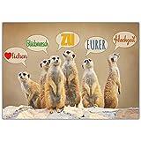 A4 XXL Hochzeitskarte ERDMÄNNCHEN mit Umschlag - edle & lustige Glückwunschkarte - Maxikarte zum Aufklappen zur Hochzeit Karte von...