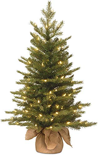 National Tree Company 'Feel Real' Pre-lit Artificial Mini Christmas Tree | Includes Small Lights and Cloth Bag Base | Nordic Spruce - 3 ft