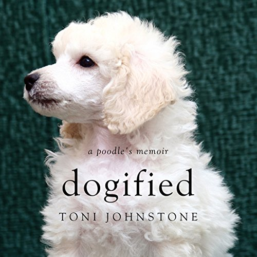 Dogified audiobook cover art