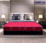 Wake-Up Queen Size Foam Mattress (72x60x4 inch)