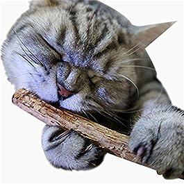 Nighteyes66 2pcs Cat Kitten Molar Chew Stick Treat Toy Natural Wood Catnip