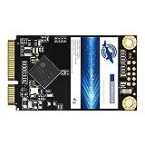 Dogfish Msata 32GB Internal Solid State Drive Mini Sata SSD Disk