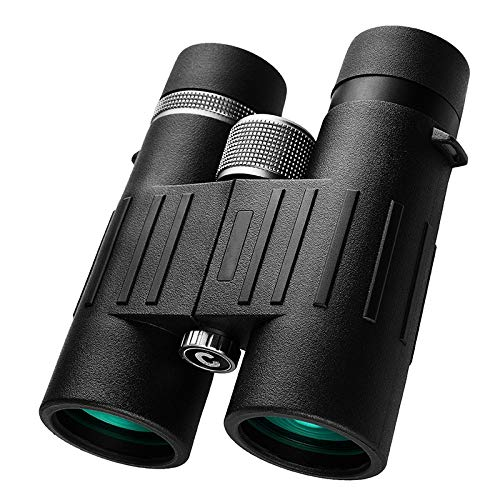 Buy Bargain Taweo High-Definition Binoculars Large Eyepiece 8x42 Low Light Night Vision Outdoor Nitr...