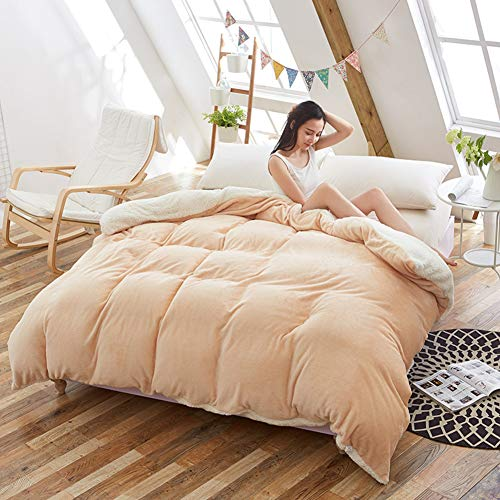 RR&LL Winter Plush Duvet Cover,thicken Flannel Warmth Quilt Cover Extra Soft Comfort Hypoallergenic Bedding Comforter Cover With Zipper-light Brown 180x200cm(71x79inch)