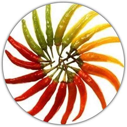 Heirloom Hot Serrano Chili Samen / 20 Stück/schnell wachsend/ertragreich